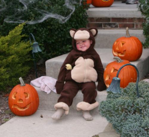 monkey1.jpg